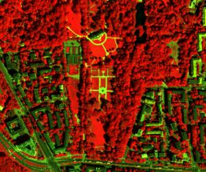 Mapa Koron Drzew, zrzut 4 / UM Warszawa